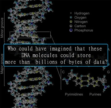 dna-data-jpeg